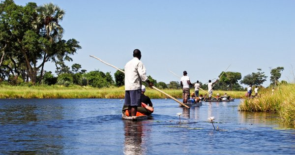 Over the Lush Wild Wetlands With a Botswana Private Guided Tour !