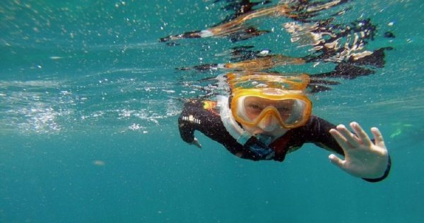 Snorkeling Tour of 50 Minutes With a Guide