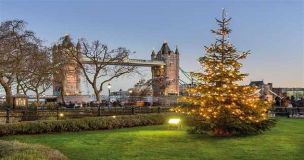 One Day Hop on Hop Off Bus Tour - Christmas Day