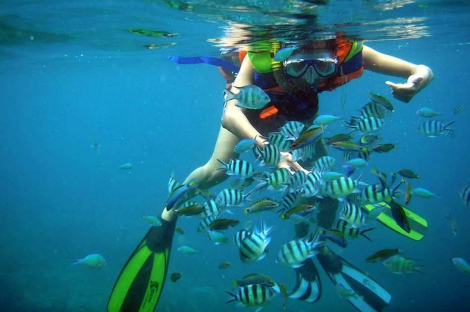 Island & Snorkeling Private Tour by Wooden Boat